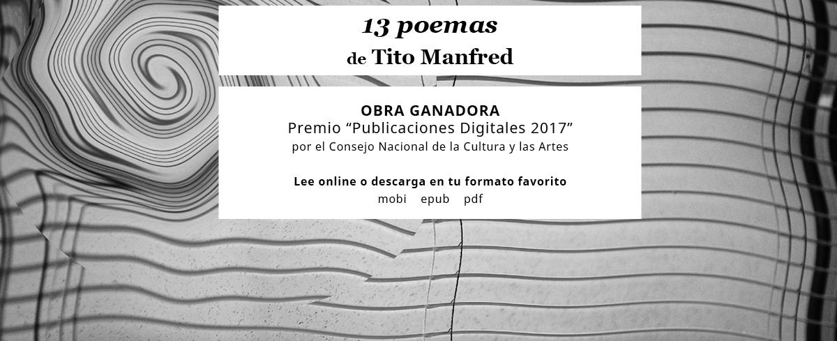 publicidad 13 poemas
