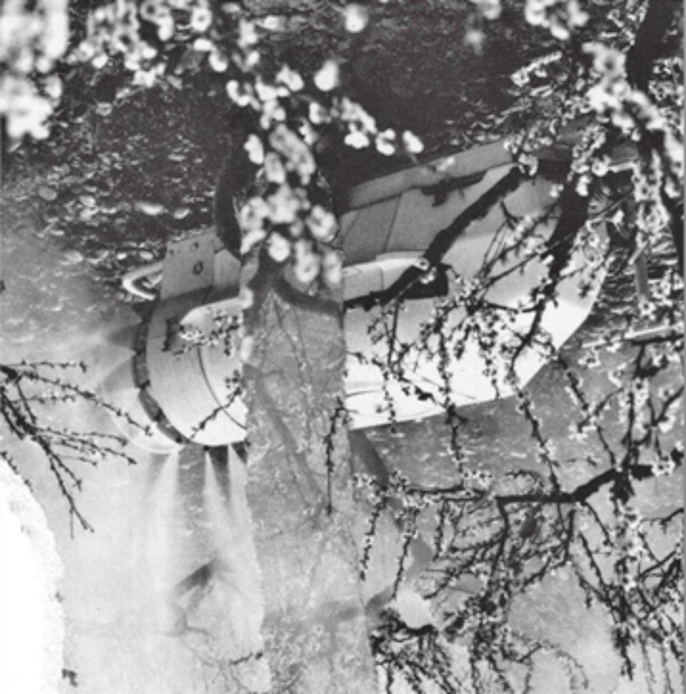 Los sueños de los sueños de Kurosawa