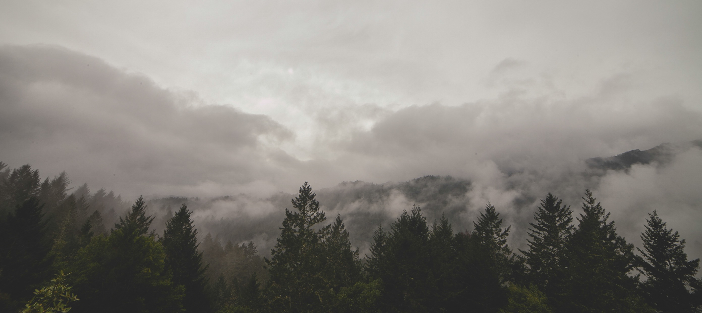 mountains-clouds-forest-trees