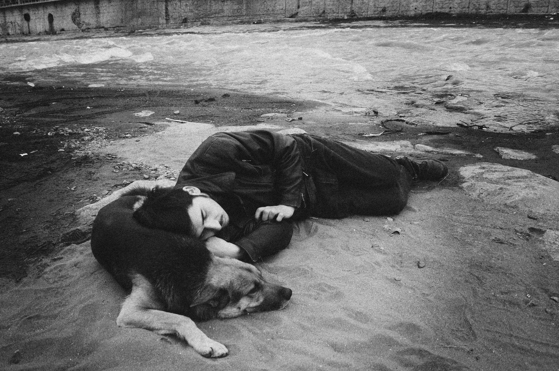 Imagen destacada Las cachorras